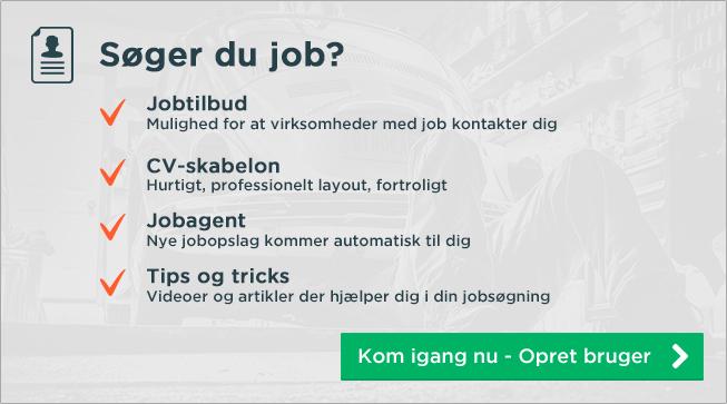 studiejob søges